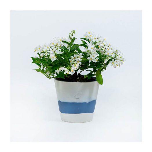 Burlington Jasperware Plant Pot 11.5cm
