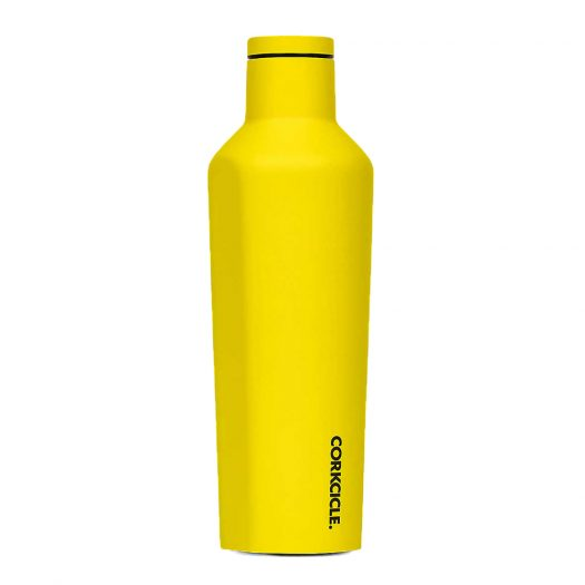 Neon Stainless Steel Canteen 16oz
