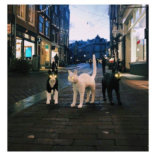 Jobby The Cat Resin Lamp 46cm