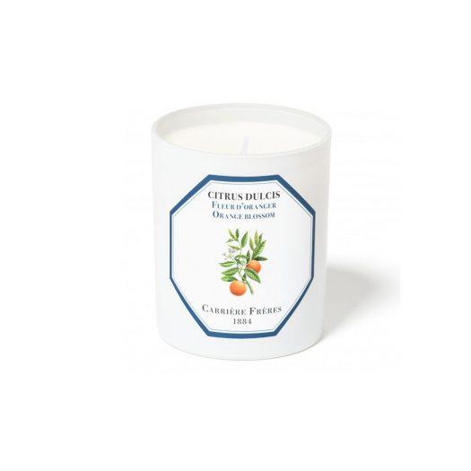 Orange Blossom Scented Candle 185 gr