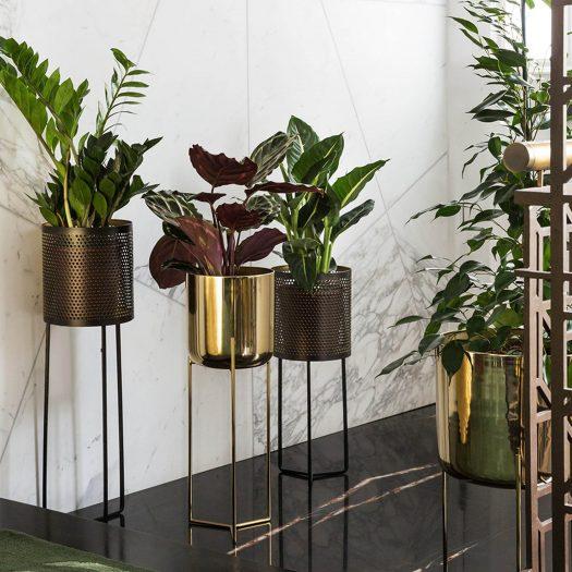 Raised Gold Planter – Short