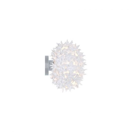Bloom Wall Ceiling Light CW2
