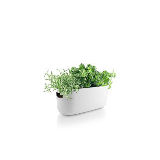 Self-Watering Herb Organiser White