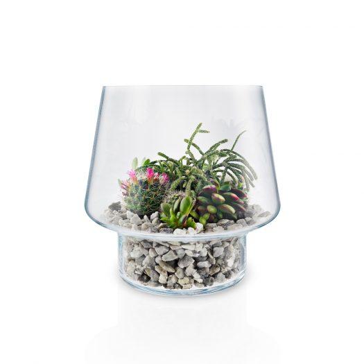 Succulent Glass Vase 21cm