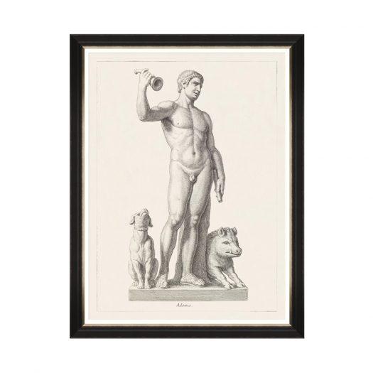 GREEK GODESS AND GODS - ADONIS
