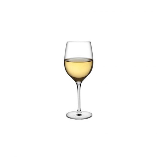 Terroir Set of 2 White Wine Glasses