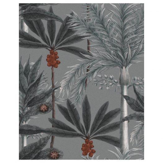 MADAGASCAR Grey